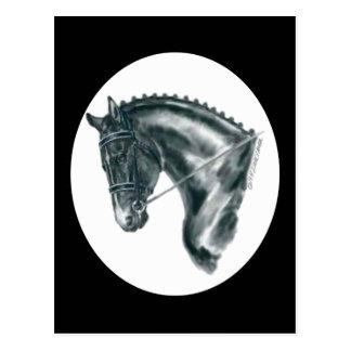 Retrato negro del caballo del Dressage Tarjeta Postal