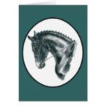 Retrato negro del caballo del Dressage Tarjetas