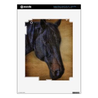 Retrato negro del caballo en efecto rústico del iPad 3 pegatinas skins