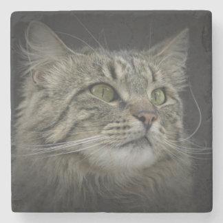 Retrato noruego del gato del bosque posavasos de piedra