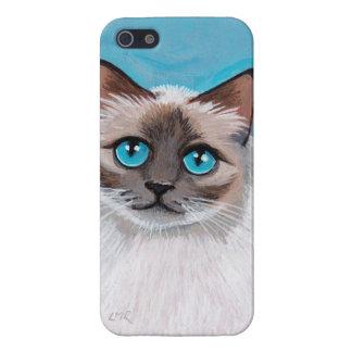 Retrato observado azul del gato de Ragdoll iPhone 5 Carcasa