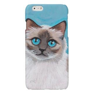 Retrato observado azul del gato de Ragdoll