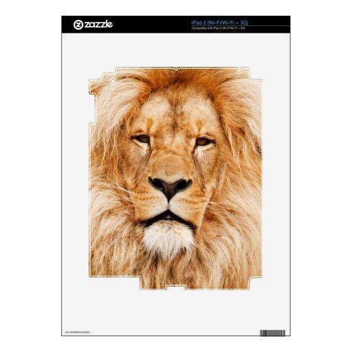 Retrato orgulloso del león calcomanías para el iPad 2