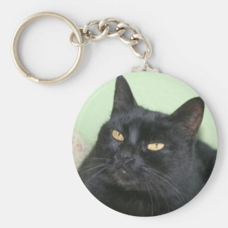Retrato relajado del gato negro llaveros personalizados