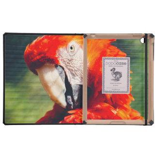 Retrato rojo del loro del Macaw, pájaro exótico iPad Cobertura