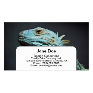 Retrato serio de la iguana tarjetas personales
