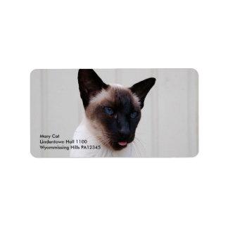 Retrato siamés del gato etiquetas de dirección
