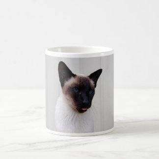 Retrato siamés del gato tazas