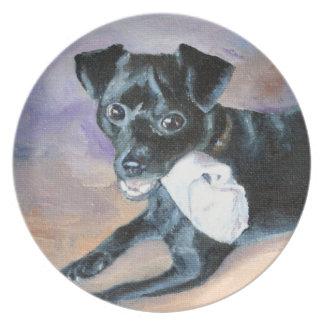 Retrato Snoopy del perro de la mezcla de Terrier d Plato