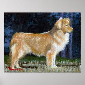 Retrato tocante del perro del perro perdiguero del póster