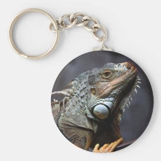 Retrato verde de la iguana llavero redondo tipo pin