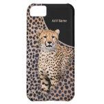 Retrato y piel - personalizar del guepardo