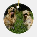 Retreivers de oro en hierba adorno de navidad