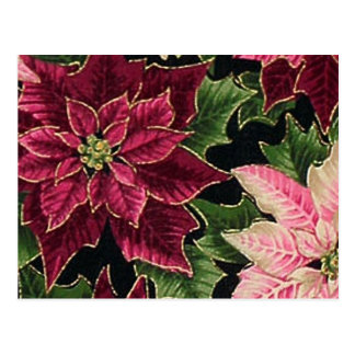 Retro 50s Poinsettia Burgundy Pink Postcard