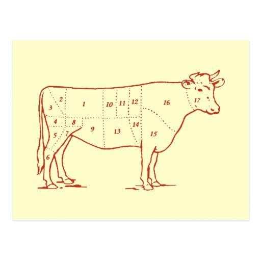 Retro Beef Cuts Postcard