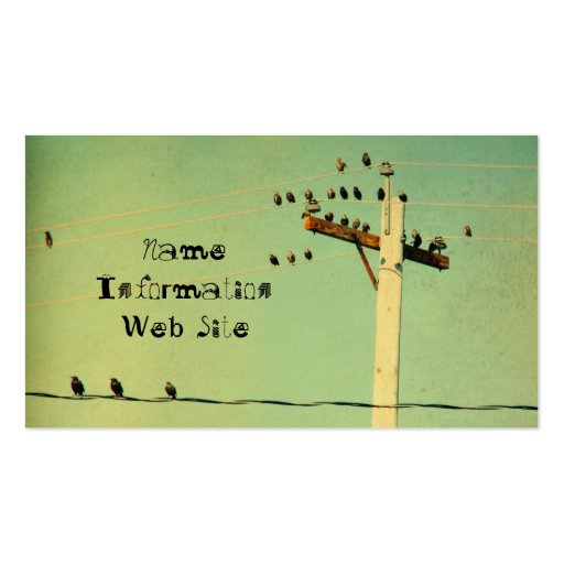 Retro Birds Business Card Template