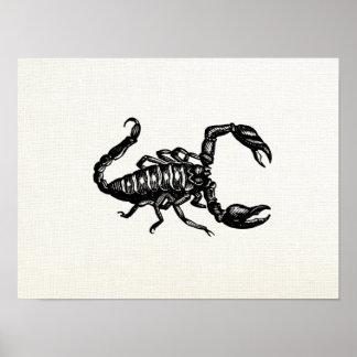 Retro Black Scorpion Art Poster