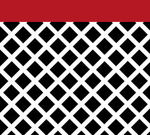Black White Red Modern Modern Shower Curtains