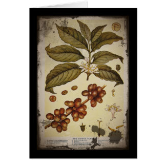 Retro Botanical Image Coffee Card