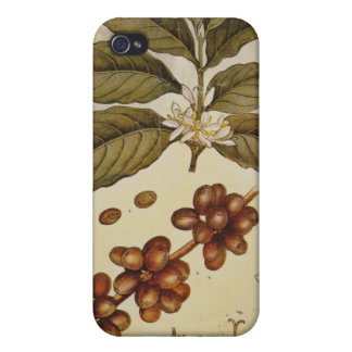 Retro Botanical Image Coffee Cases For iPhone 4