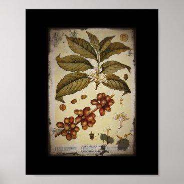 Coffee Themed Retro Botanical Image Coffee Poster