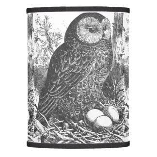 Retro Brooding Owl Drawing Lamp Shade