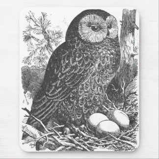 Retro brooding owl drawing mouse pad