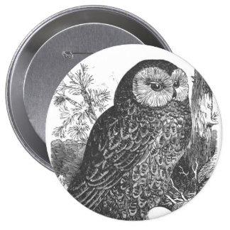 Retro brooding owl drawing pinback button