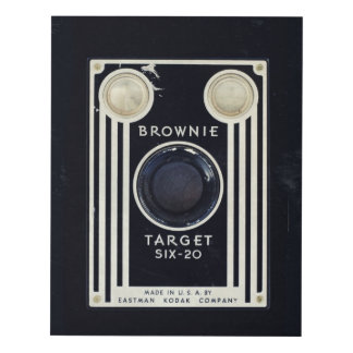 Retro camera brownie target panel wall art