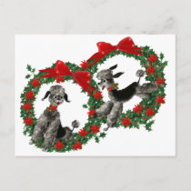 Retro Christmas Poodles in Wreaths Holiday Postcard