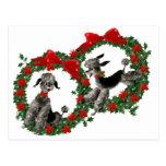 Retro Christmas Poodles in Wreaths Postcard