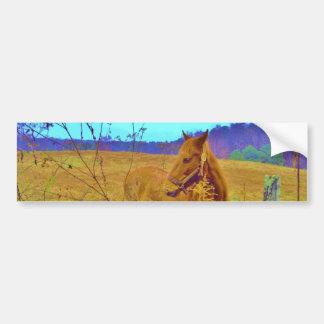 Retro Colored Horse Bumper Sticker