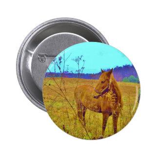 Retro Colored Horse Button