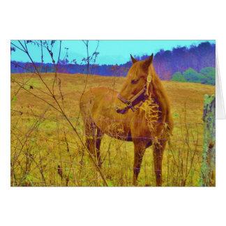 Retro Colored Horse Card