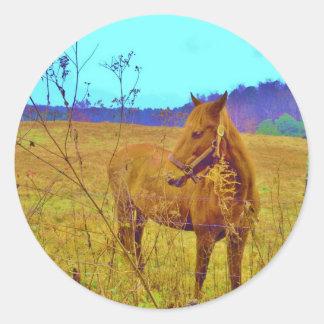 Retro Colored Horse Classic Round Sticker
