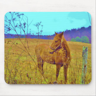 Retro Colored Horse Mouse Pad