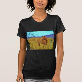 Retro Colored Horse Shirt