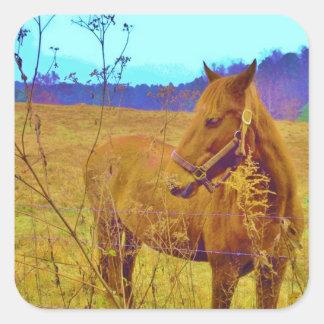 Retro Colored Horse Square Sticker