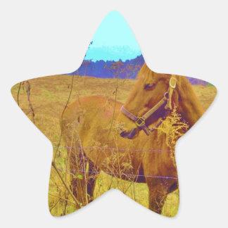 Retro Colored Horse Star Sticker