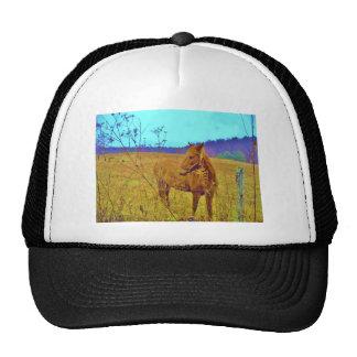 Retro Colored Horse Trucker Hat
