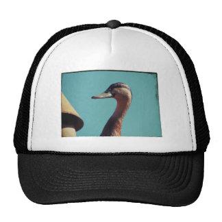 Retro Duck Trucker Hat