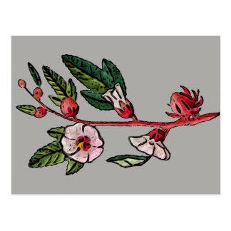 Retro Floral Sprig Postcard