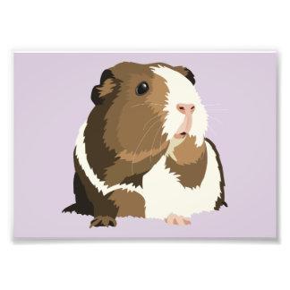 Retro Guinea Pig 'Betty' Print (Frames Available!) Photo Print