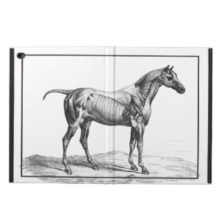 Retro horse muscle anatomy picture powis iPad air 2 case