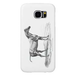 Retro horse muscle anatomy picture samsung galaxy s6 cases