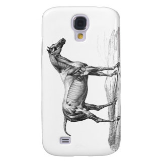 Retro horse muscle anatomy picture samsung s4 case