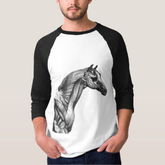 Retro horse muscle anatomy picture T-Shirt