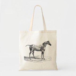 Retro horse muscle anatomy picture tote bag