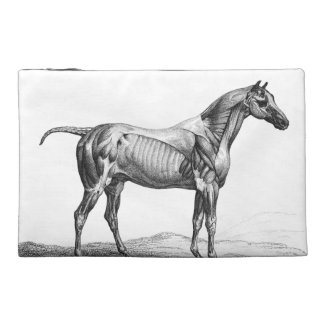 Retro horse muscle anatomy picture travel accessory bag