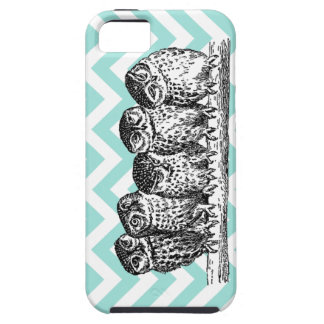 Retro Owls Perched on a Branch iPhone 4 or  Case iPhone 5 Covers